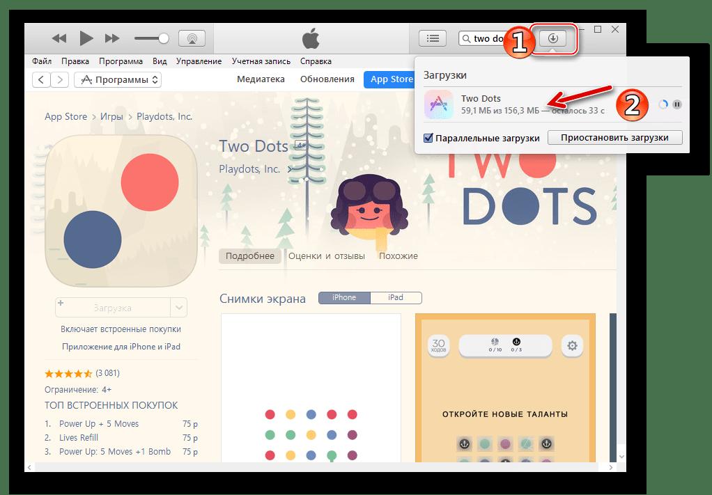 iTunes процесс скачивания пакета программы из App Store на диск ПК