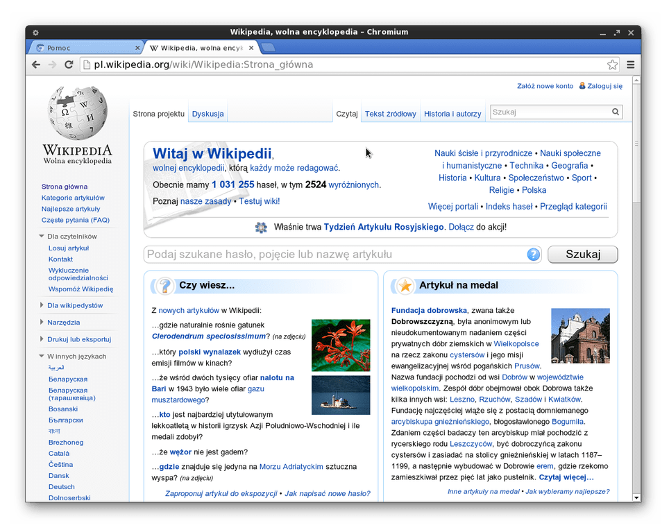 Браузер Chromium для Linux
