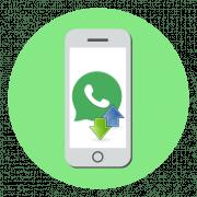 Как перенести WhatsApp с iPhone на iPhone