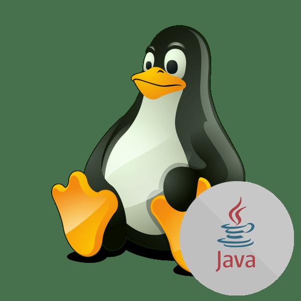 Как установить Java на Linux