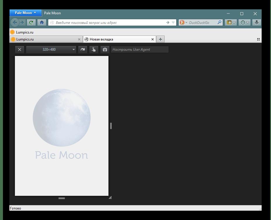 Один из инструментов веб-разработчика в Pale Moon