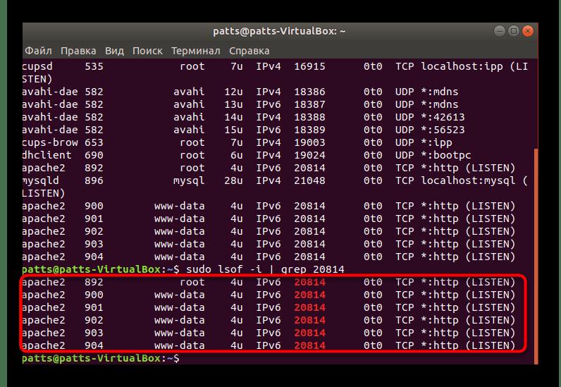 Результаты выборочного сканирования в Ubuntu
