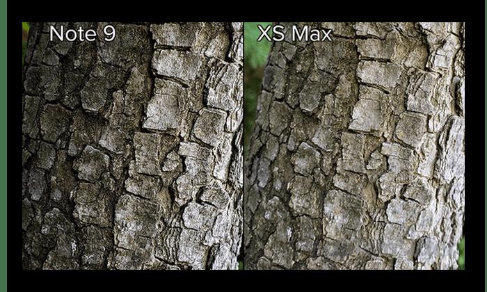 Сравнение детализации на iPhone XS Max и Galaxy Note 9