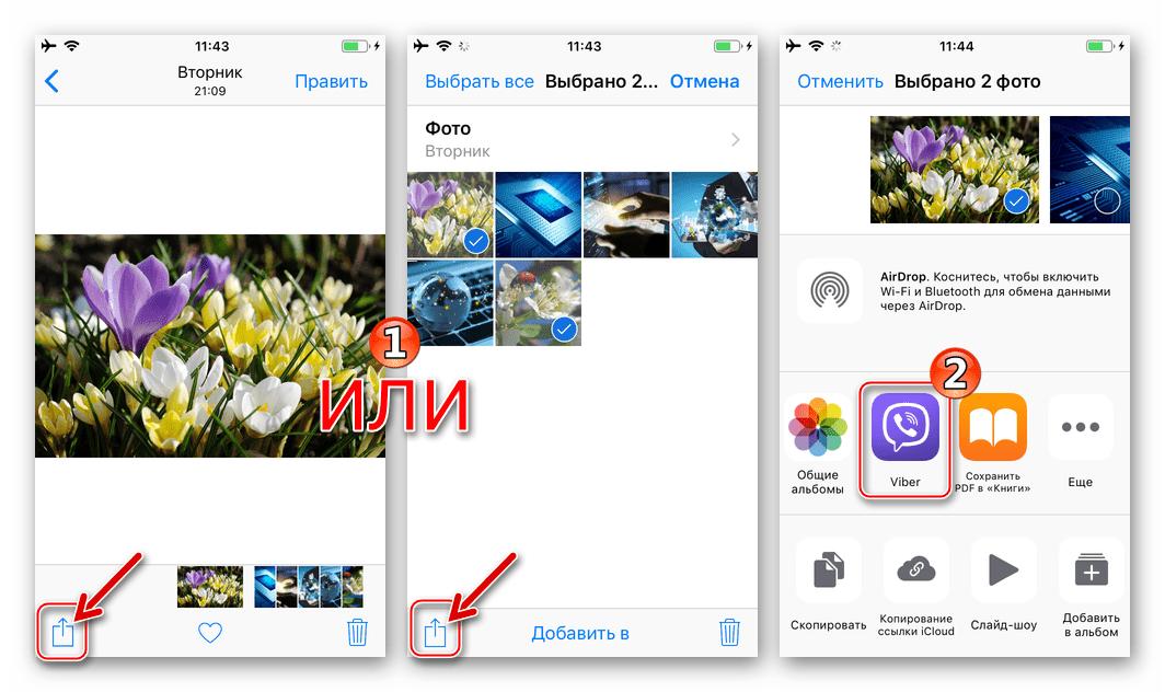 Viber для iPhone функция Поделиться в iOS, выбор мессенджера в качестве способа отправки фото
