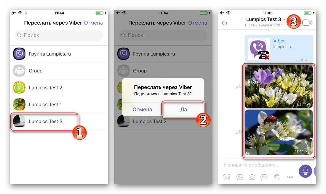 Viber для iPhone отправка изображений из приложения Фото через мессенджер в существующие чаты