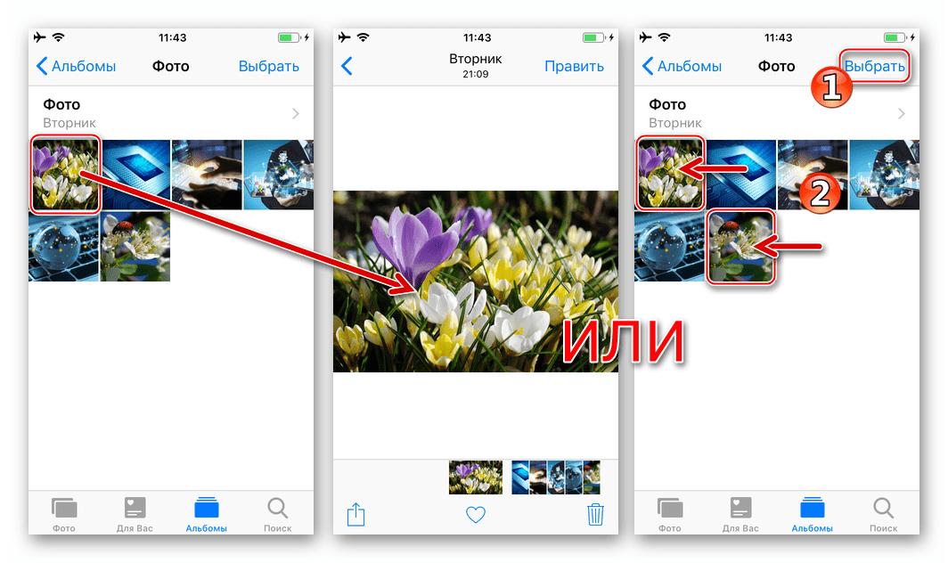 Viber для iPhone выбор одного или нескольких изображений в приложении Фото для отправки через мессенджер